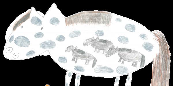 cavallo pancia